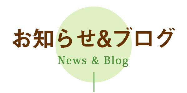 News&ブログ